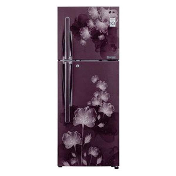 LG 310 Ltr Double Door Refrigerator GL-S322RPCL