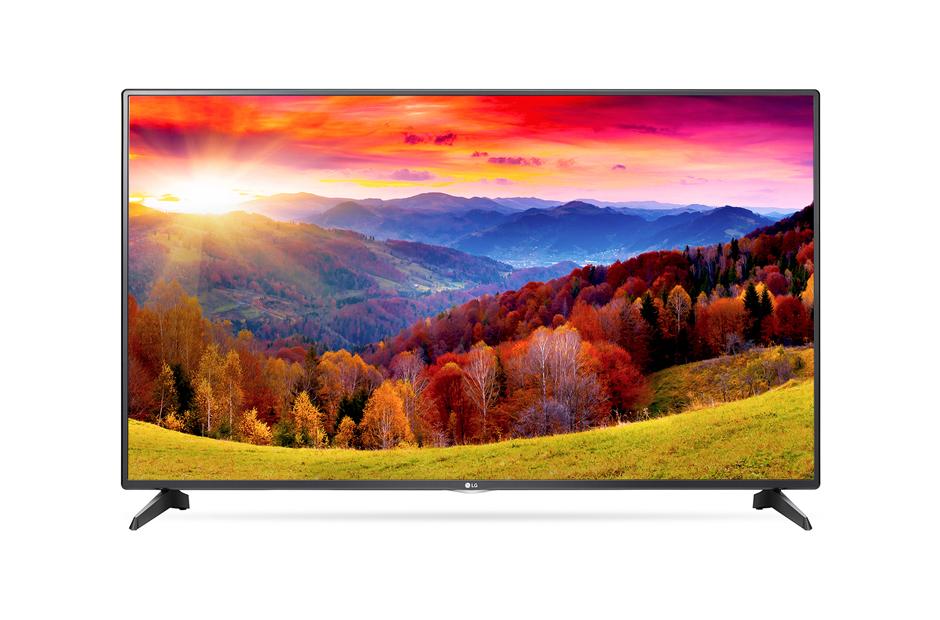 LG 43 inch LED TV 43LH541T
